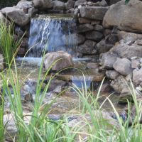 pondfalls2