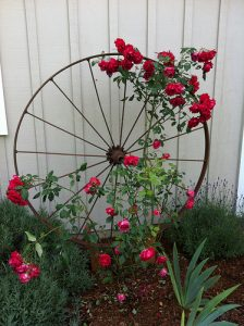 Garden Art and Salvaged Materials
