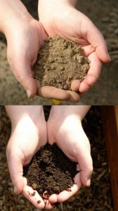 Soil Testing Before and After