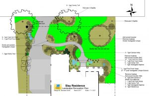 Landscape Renovation Plan