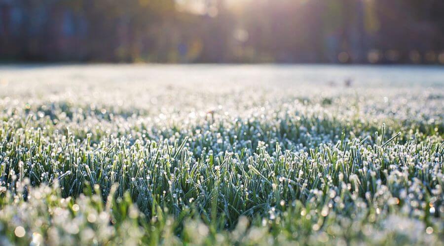 frost on grass marietta ga